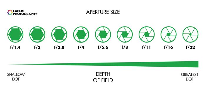 图解释了景深和孔径尺寸。