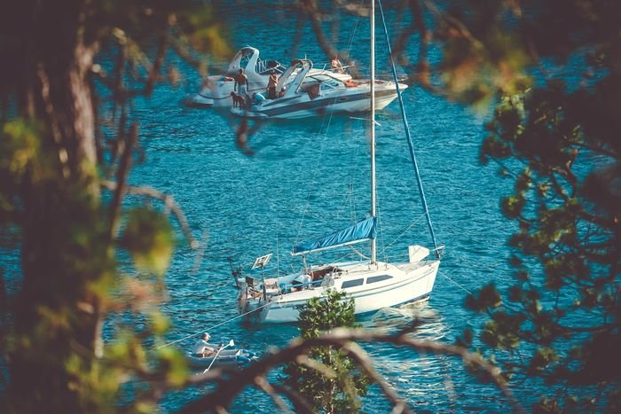 Photo of yachts on a waterscape using the branches of a tree as a photographic framing method