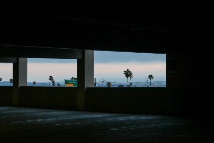 Palm trees through the windows of a concrete building creating a frame composition