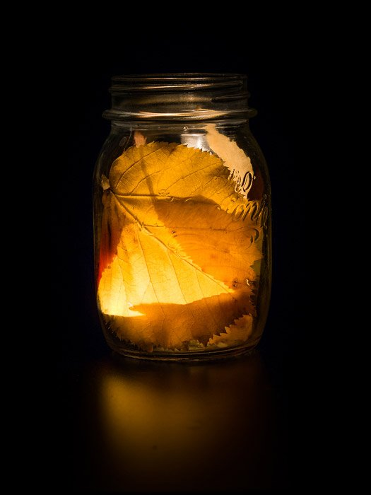 A still life photography image of leaves and a light inside a jar