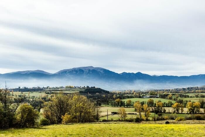 A serene landscape of green fields with mountains in the background