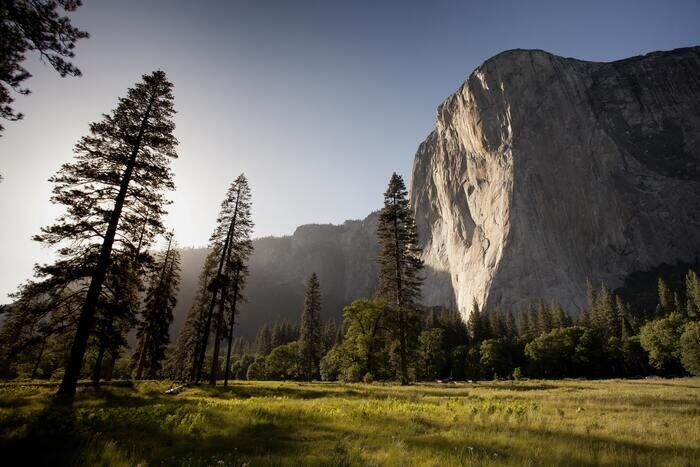 Photo of a bright landscape with trees and a cliff