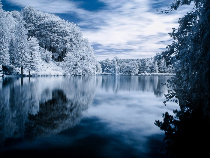 An infrared photography view of the pond in the Domaine Solvay (La Hulpe, Belgium).