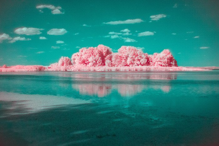 An eye-catching teal and pink landscape captured through infrared photography