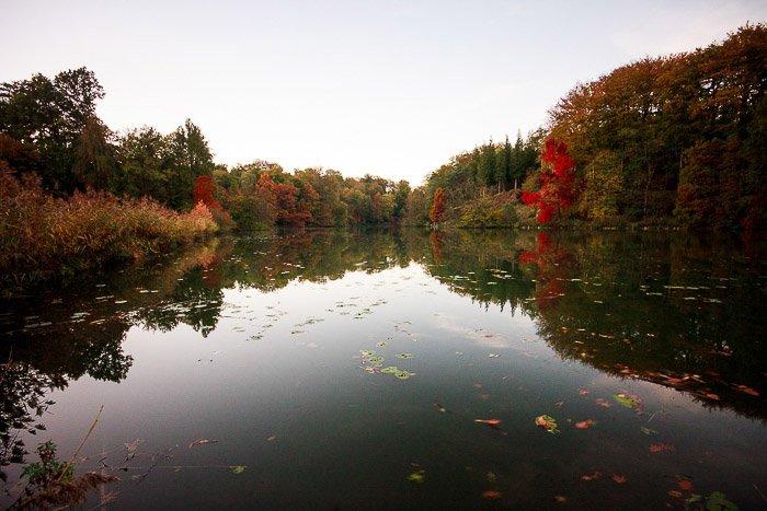 "A pond in the ""Domaine Solvay - Chateaux de la Hulpe"", La Hulpe (Belgium)."