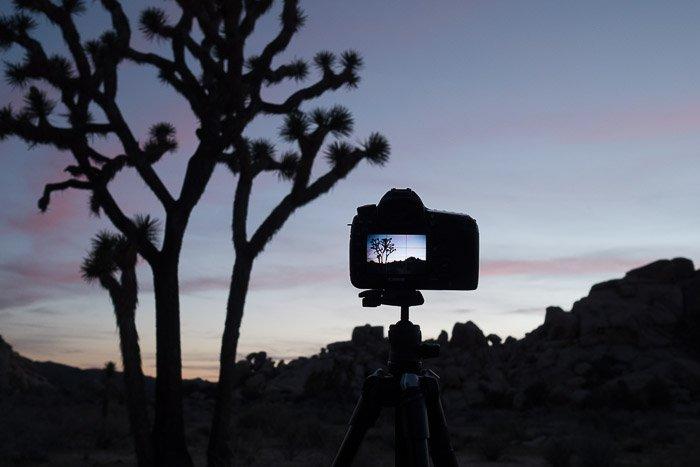 My Canon 5D Mk III at dusk.