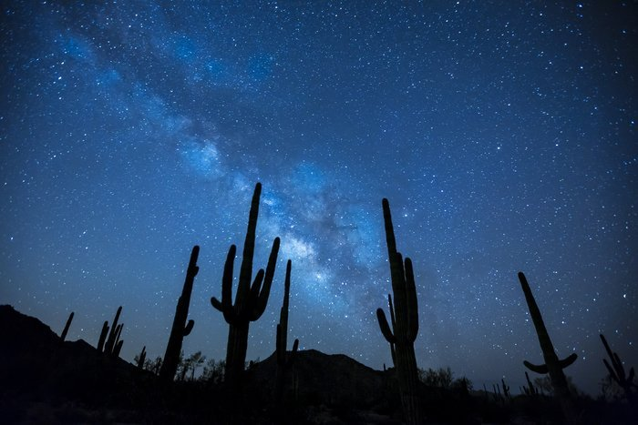 Stunning astrophotography shot of a star filled sky over the silhouettes of cacti