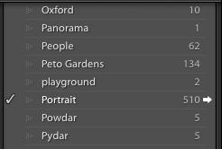 Example of keyword list panel in Adobe Lightroom