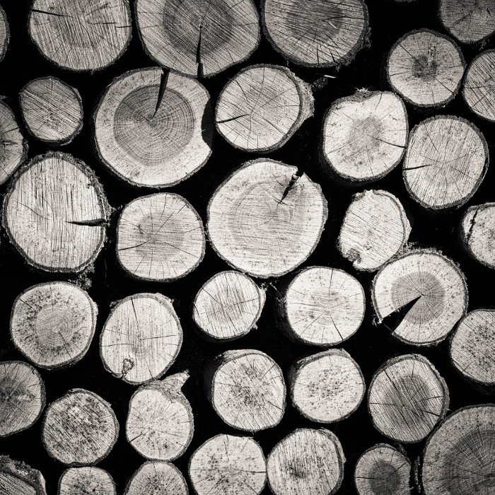 Black and white photo of stacked cut logs showing wood texture