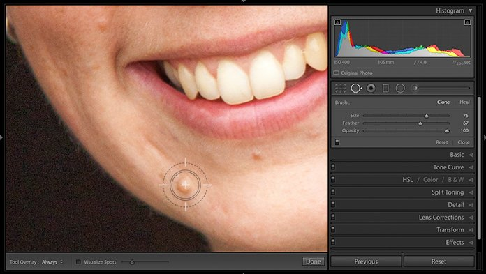 Screenshot of using the spot removal tool to edit portraits in Lightroom
