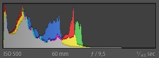 Example of histogram of a low-contrast image without bright tones