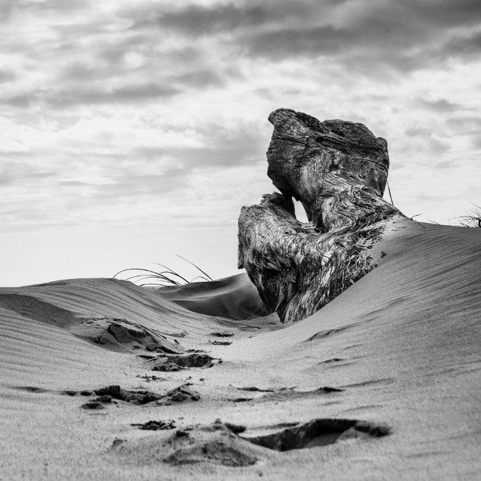 Black and white photo of sand dune with textured wood