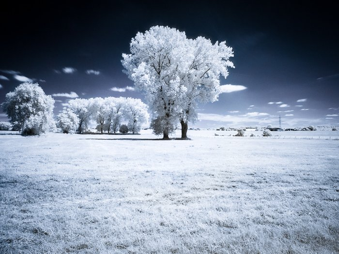 Filters for landscape photography: Example of a false infrared landscape photo