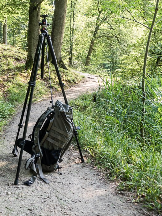 Tripods for Landscape Photography: Example of tripod weighted down using bungee cord and backpack