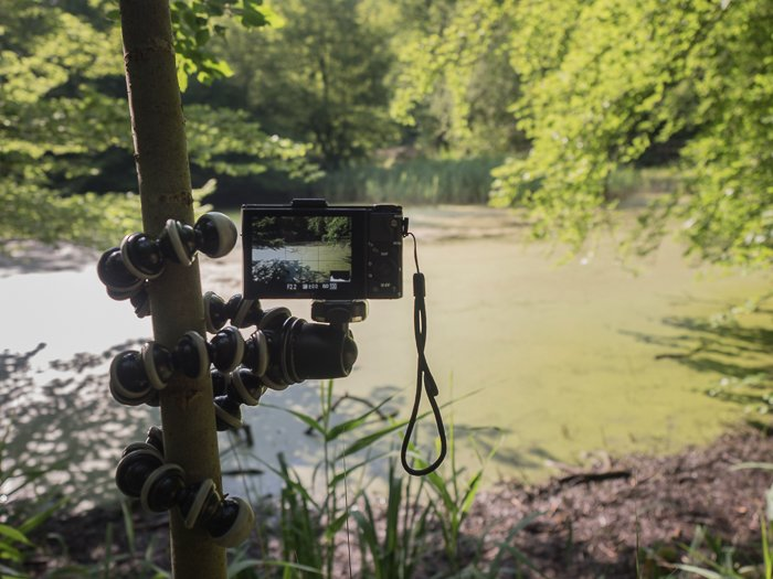 Tripods for Landscape Photography: Camera mounted on Joby Gorillapod SLR Zoom wrapped onto a tree