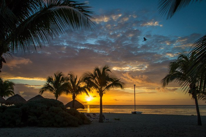 Coastal photography: sunset over beach with palm trees, rocks, and boat