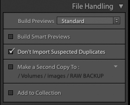 Importing photos into Lightroom: The File Handling panel