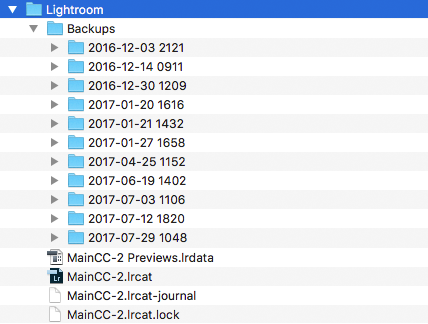 Understanding the Lightroom catalog: Example of checking for superfluous backups in folders