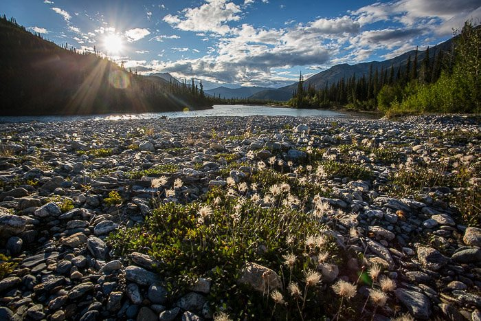 The rocky bed of an Alaskan river, looking on Mt McKinley