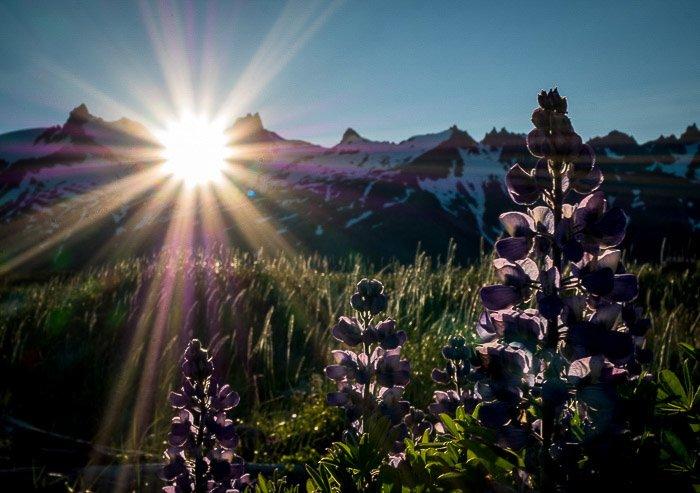 Stunning sun-rays striking a wild Alaskan national park