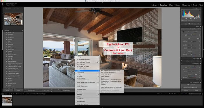 A screenshot of using the Google Nik Collection in Lightroom - right-click menu in Adobe Lightroom