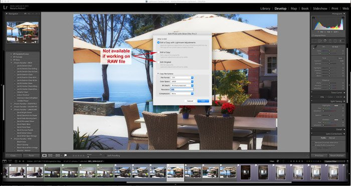 A screenshot of using the Google Nik Collection in Lightroom - Editing dialogue when working with RAW