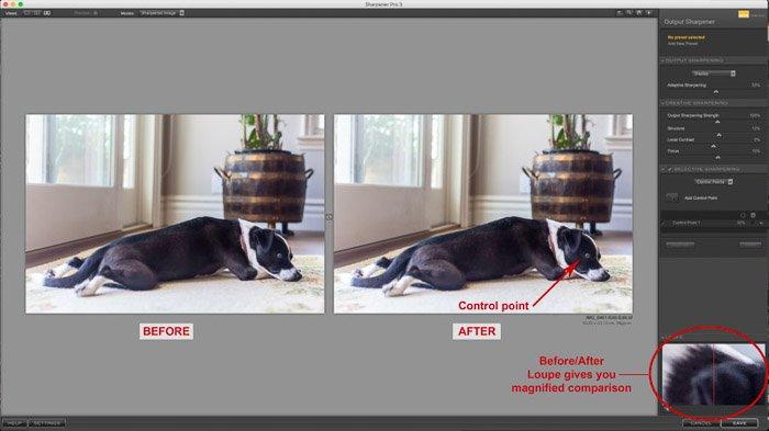 A screenshot of using Nik Collection - Sharpener Pro