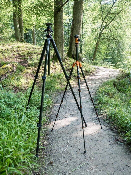 两个三脚架设置在风景摄影的森林里
