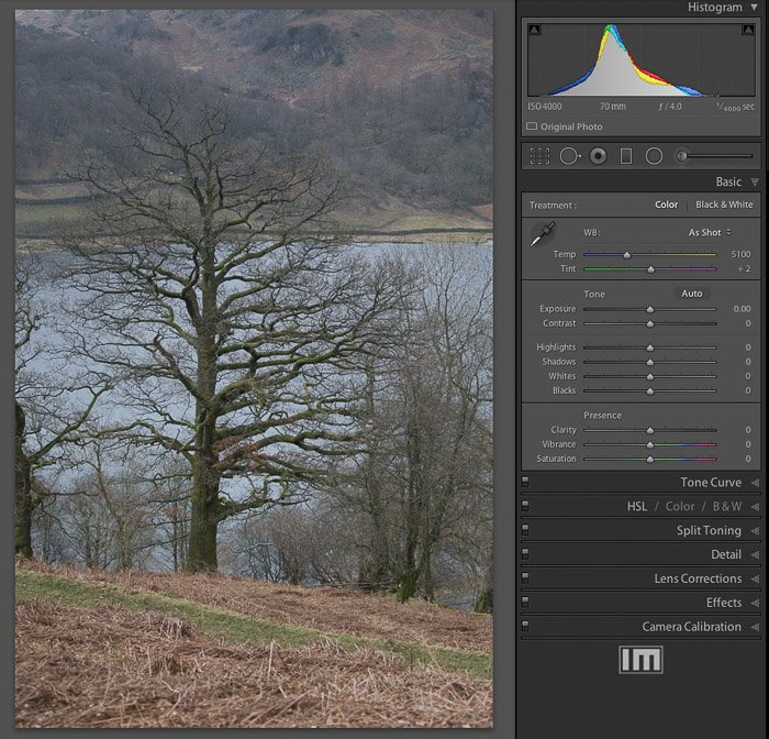 A flat image in need of greater dynamic range. Note the narrow histogram.
