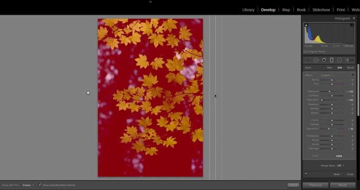 A screenshot of editing in Lightroom