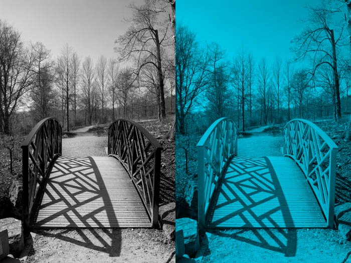 Diptych showing difference between a B&W (left) and monochrome (right) photo of a bridge