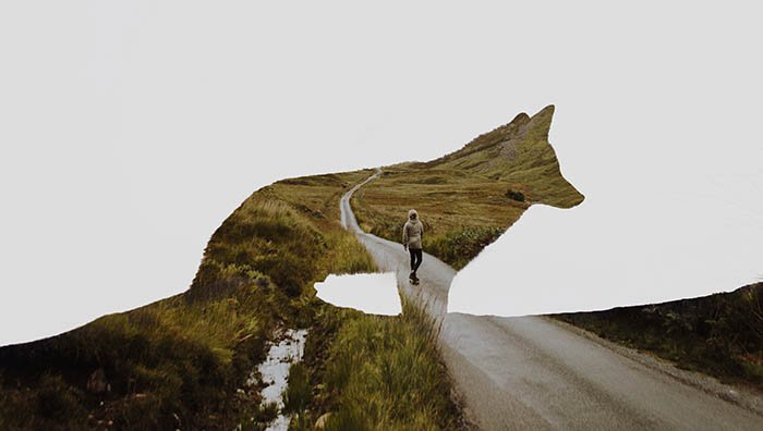 silhouette of a wolf merged with the picture of a lone person on a road