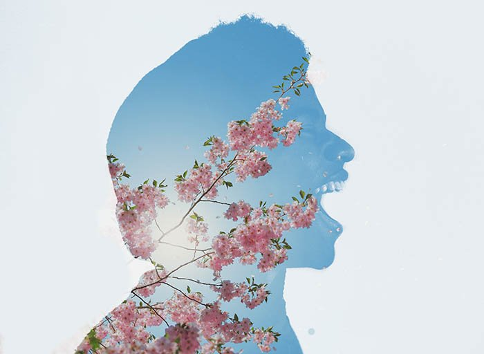 silhouette of a laughing woman double exposed with the picture of a cherry tree