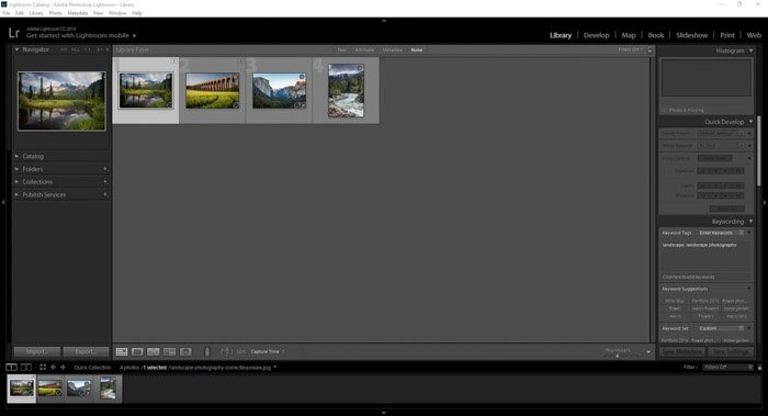 Using landscape images