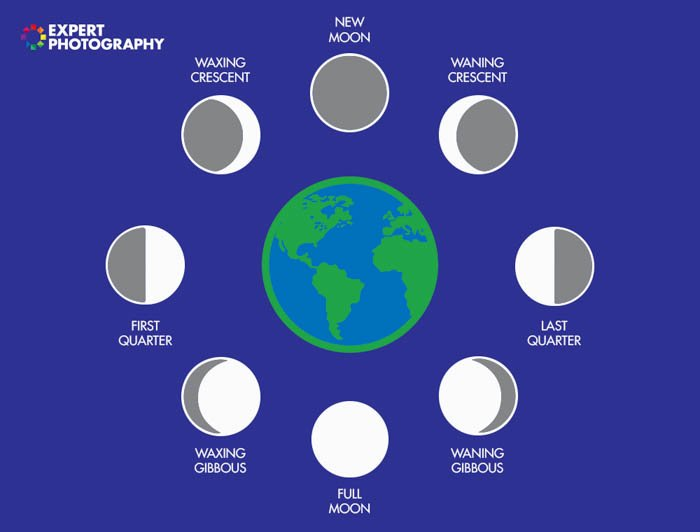 A diagram showing the moon during different phases