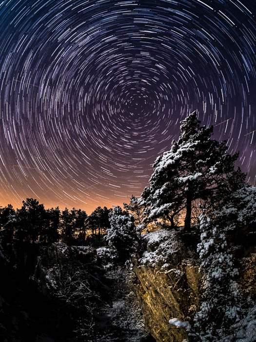 pine tree in the foreground, star trails in the background