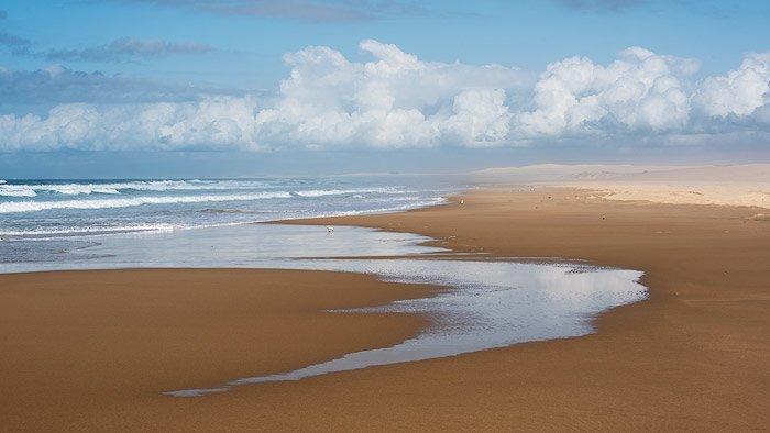 A beach coast
