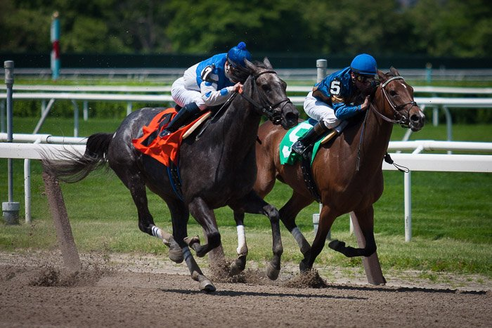 Two horses and riders running in a race
