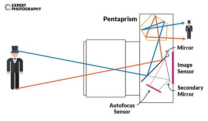Illustration on how a D S L R camera works
