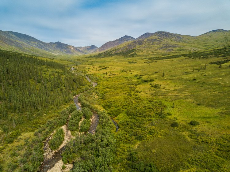 Aerial photography view of a forest of green trees and mountains taken by a drone