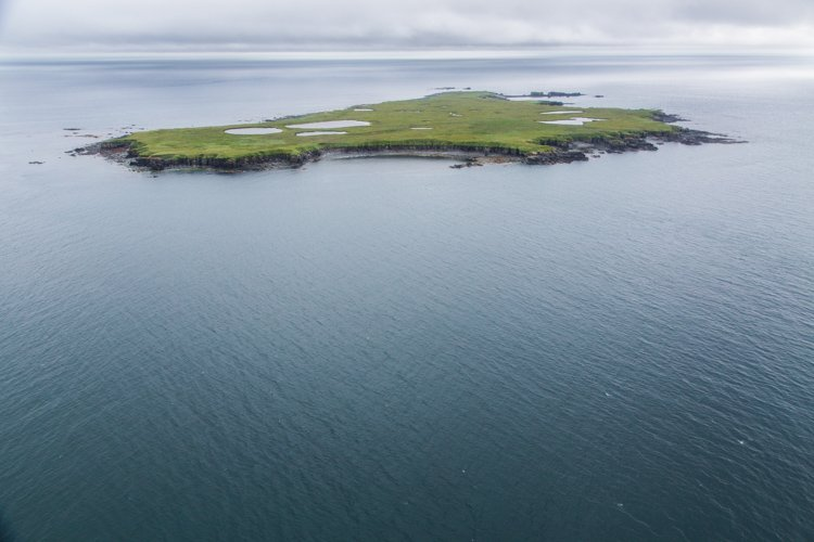 Aerial photography view of a green island on an overcast day