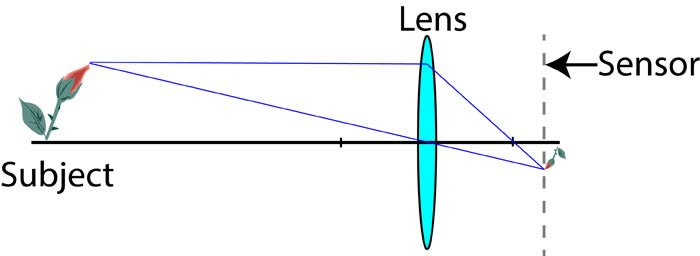 conventional close up photography graph