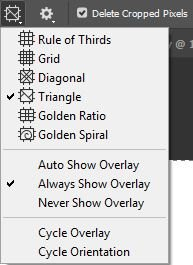composition overlays