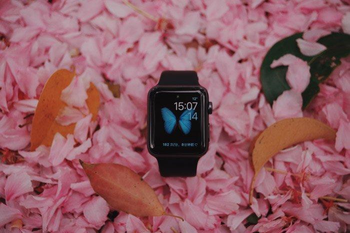 A digital watch on rose petals