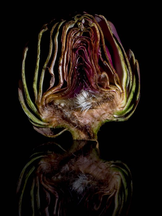 A half artichoke in front of a black background with its reflection