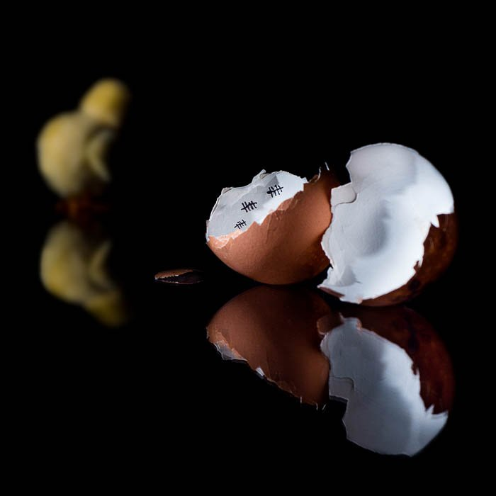 A creative eggshell and chicken prison photograph