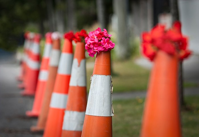 a line of traffic cones holding bunches of pink and red flowers on top