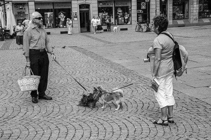 Black and white urban photograph of two people with dogs meeting on a street in Strassbourg