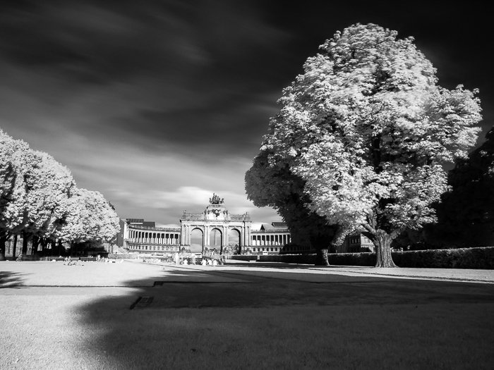 black and white infrared photo of the Parc du Cinquantenaire (Brussels, Belgium) under a dramatic cloudy sky , with grass and trees in the foreground