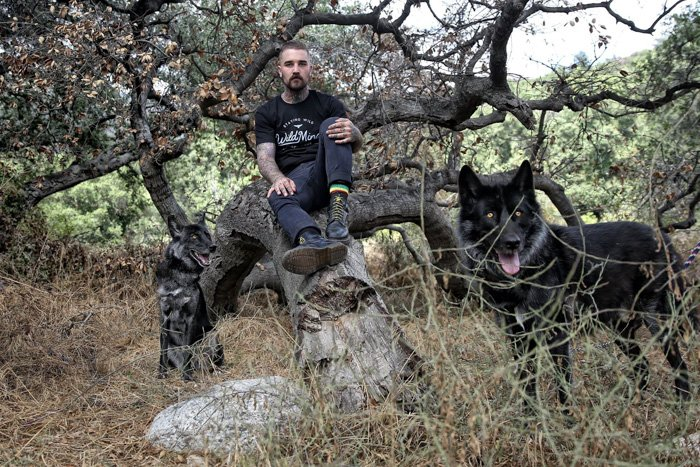 Shot of a man sitting on a tree with a black dog below in dry grass